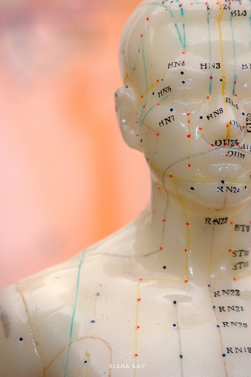 Cropped close up of an acupuncture model head.