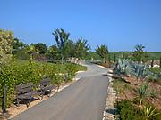 Israel, Dan Region, Hiriya, Ariel Sharon Park