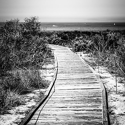 Crystal Cove wooden walkway black and white picture. The boardwalk leads to the Pacific Ocean at Crystal Cove State Park in Laguna Beach in Orange County Southern California. Copyright © 2012 Paul Velgos with All Rights Reserved.