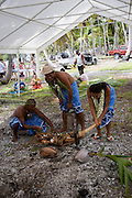 Coconut husking, Fakarava, Tuamotu Islands, French Polynesia, (Editorial use only)<br />