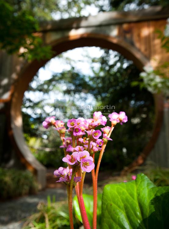 PlantAsia Garden, May