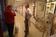 NLD, Niederlande: In einem Gang der Klinik bespricht ein Arzt mit einem Hundebesitzer die Situation, Universitätsklinik für Gesellschaftstiere, Fakultät der Tierheilkunde, Utrecht | NLD, Netherlands: In a corridor of the hospital a physician discussing the situation with an owner of dog, university clinic for companion animals, faculty of veterinary medicine, Utrecht |