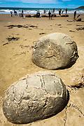 Moeraki boulders and tourists, Moeraki, Otago, South Island, New Zealand