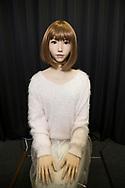 ERICA: ERATO ISHIGURO Symbiotic Human-Robot Interaction Project<br /> <br /> <br /> Fotograf: Christina Sj&ouml;gren<br /> Copyright 2018, All Rights Reserved