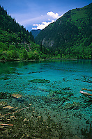 Stunning view across the clear turquoise waters of Five Flower Lake in Jiuzhaigou National Park, Sichuan, China.