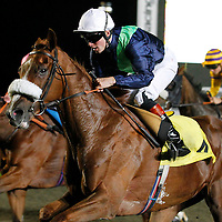 Halling's Treasure and Thomas Brown winning the 7.40 race