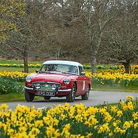 Car 71 Doug Carmichael / John Gearing MG B