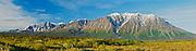Panorama of St. Elias Mountains<br /> Kluane National Park<br /> Yukon<br /> Canada