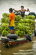 "10 JUNE 2014 - YANGON, MYANMAR:   A banana boat comes to the jetty in Yangon. The ""banana jetty"" is on the Yangon River north of central Yangon on Strand Road. Bananas, coconuts and other fruit are brought in here from upcountry, sold and reshipped to other parts of Myanmar (Burma). All of the labor here is done by hand. Porters carry the produce to the jetty and porters load the boats before they steam upriver.   PHOTO BY JACK KURTZ"