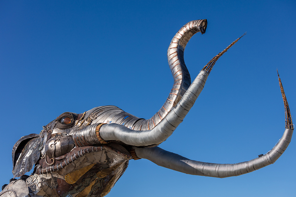 The Monumental Mammoth<br /> by: Girl Scout Gold Award Recipient Tahoe Mack, Mentor and Protector of Tule Springs Representative Sherri Grotheer, and artists Luis Varela-Rico and Dana Albany<br /> from: Las Vegas, NV<br /> year: 2019<br /> <br /> The Monumental Mammoth project will depict a life-sized steel Colombian mammoth skeleton collaged with metal found objects to tell the story of Tule Spring National Monument's past, present, and future. The sheer size and struggle of the mammoth's stance is a representation of the universal call to protect what the earth has given humanity. As a community, we are called together to protect the fossils of our past and the education of our future. Dana Albany and Luis Varela-Rico are pulling together the sleek elements of the interior steel structure and the intricate weavings to represents the distinctive community that is Las Vegas.It also tells the story of a rising feminine power, and shows all women of any age that anything is possible!<br /> <br /> URL: https://tulemammothproject.wordpress.com<br /> Contact: tulemammothproject@gmail.com<br /> <br /> https://burningman.org/event/brc/2019-art-installations/?yyyy=&artType=H#a2I0V000001AVtMUAW My Burning Man 2019 Photos:<br />