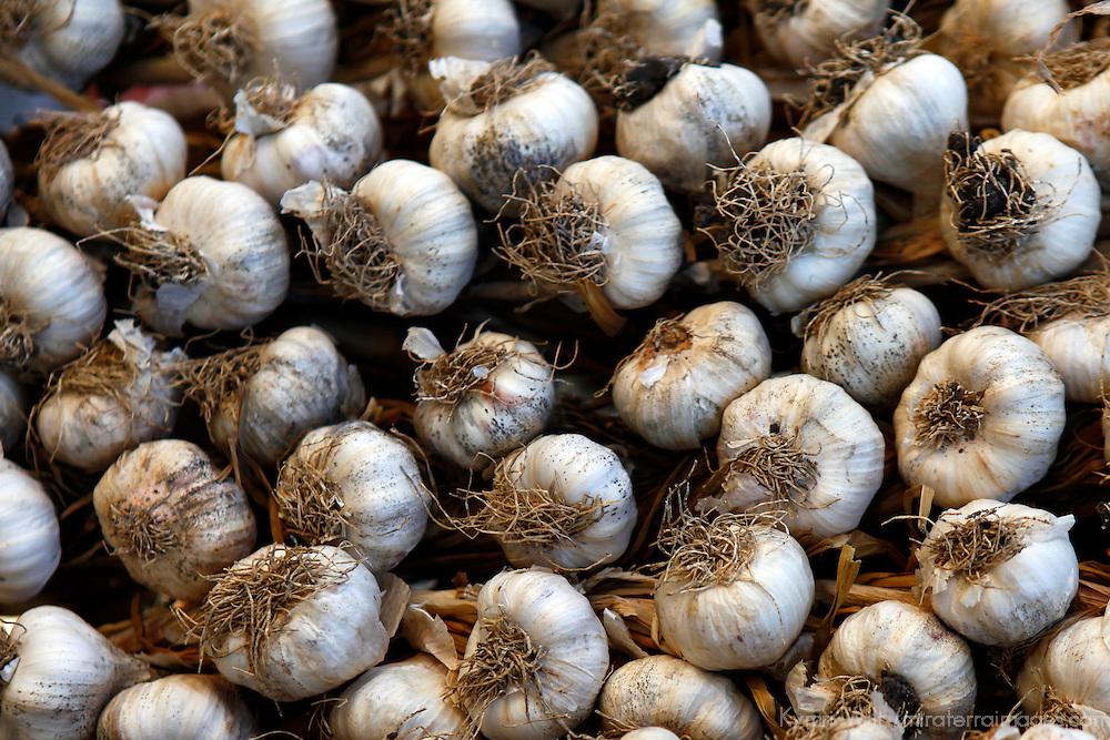 Central America, Cuba, Santa Clara. Garlic Cloves for sale in a local street market of Santa Clara.