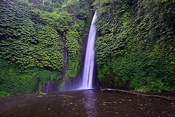 27.07.2014, Bali, IDN, Natur und Sehenswuerdigkeiten in Indonesien, im Bild Wasserfall von Munduk, Bali, Indonesien. EXPA Pictures © 2014, PhotoCredit: EXPA/ Eibner-Pressefoto/ Schulz<br /> <br /> *****ATTENTION - OUT of GER*****