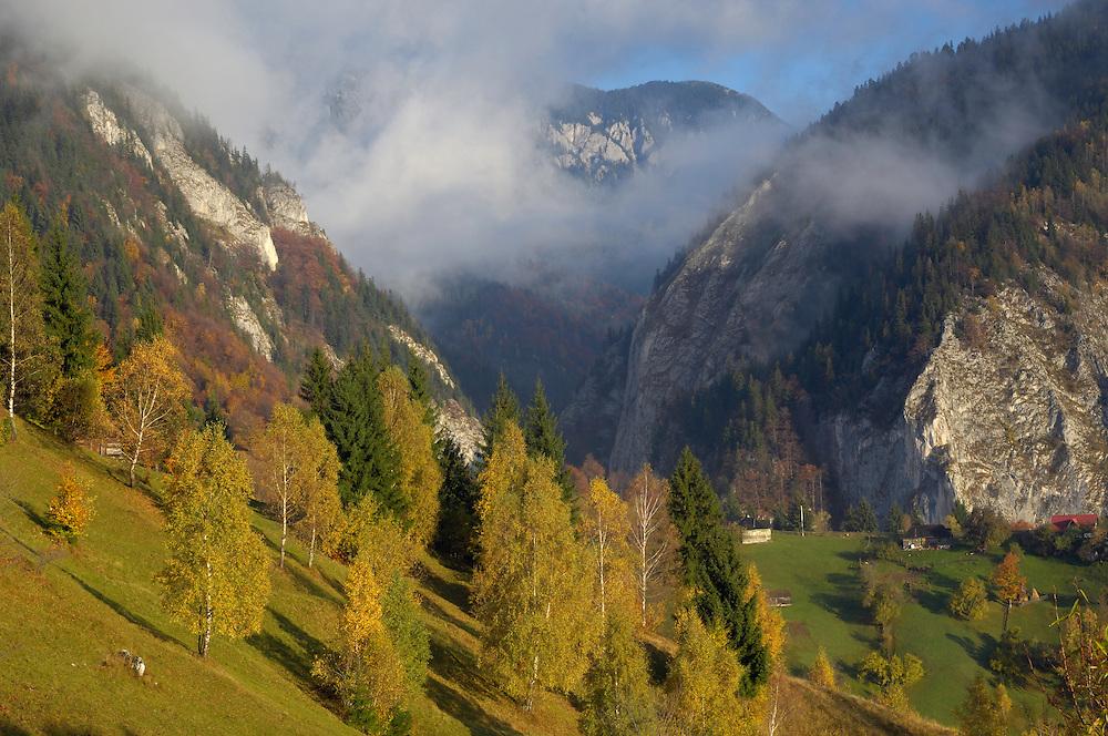 Valea Prapastiilor and Mt. Rock of the King, National Park Piatra Craiului, Transylvania, Southern Carpathians, Romania