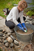 Mitzi scrubs rocks to be placed in her garden, South Addition, Anchorage