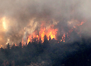 Fire rages through the forest in the High Park fire west of Fort Collins, Colorado June 19, 2012.  REUTERS/Rick Wilking  (UNITED STATES)