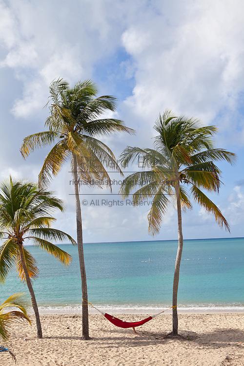 Hammock on coconut palms Sunbay beach in Vieques Island, Puerto Rico.