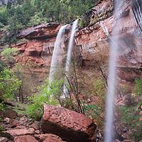 19 - Zion National Park