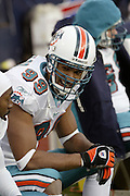 Dolphins defensive end Jason Taylor (2 tackles, 3 assists, and 2.5 sacks) enjoys a laugh on the bench during a 20 to 3  win by the Miami Dolphins over the Buffalo Bills in an NFL Week 16 game in Buffalo on December 21, 2003. ©Paul Anthony Spinelli