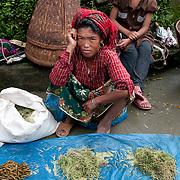 Nepal 2014. Manibanjan. Market day. Women selling vegetables