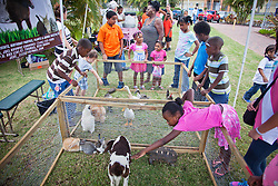 Children pet rabbits, chickends, ducs, turtles, and more at Connors Farm Pony Rides and Petting Zoo.  Easter Sunday Extravaganza at Crown Bay Center.  St. Thomas, VI.  5 April 2015.  © Aisha-Zakiya Boyd