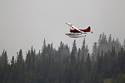 Single engine float plane flying above the tree line, Lake Clark National Park, Alaska, United States of America