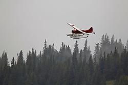 Single engine float plane flying above the tree line, Lake Clark National Park, Alaska, United States of America