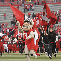 Dec 5, 2009; Piscataway, NJ, USA; The Rutgers Scarlet Knight mascott leads the team onto the field for first half NCAA Big East college football action between Rutgers and West Virginia at Rutgers Stadium.