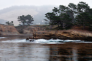 Fog slowly lifts as waves crash against rock at Whaler's Cove, Point Lobos State Natural Reserve, just south of Carmel, California.