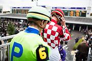 November 1-3, 2018: Breeders' Cup Horse Racing World Championships. Jockey Corey Lanerie