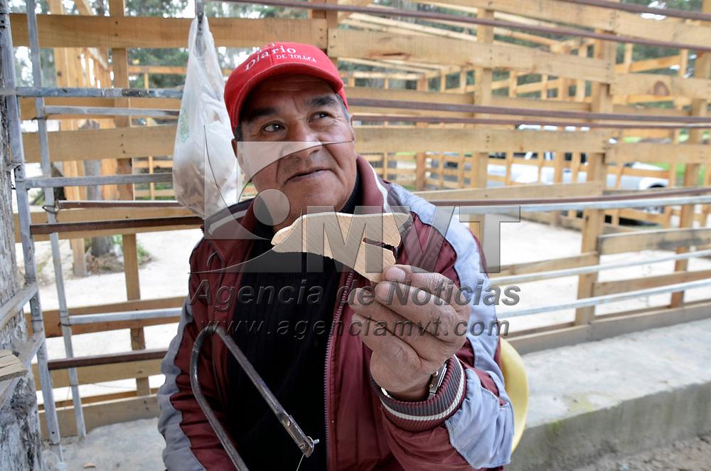 TOLUCA, Mexico (Julio 06, 2017).- Félix Magno Reyes, Artesano de Capultitlan, quien se dedica a elaborar rompecabezas de madera desde hace 20 años, con figuras de animales y quien vende sus artesanías afuera del Zoológico de Zacango. Agencia MVT. José Hernández.