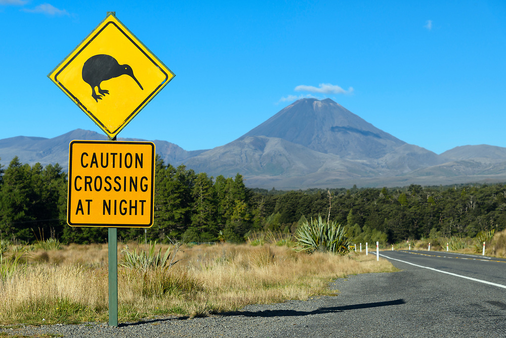 Oceania, New Zealand, Aotearoa, North Island, Tongariro National Park, Kiwi sign and Highway