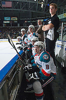 KELOWNA, CANADA - JANUARY 4: Colten Martin #8 of the Kelowna Rockets sits on the bench against the Vancouver Giants on January 4, 2014 at Prospera Place in Kelowna, British Columbia, Canada.   (Photo by Marissa Baecker/Shoot the Breeze)  ***  Local Caption  ***