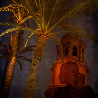 Palm trees and church tower in Cadiz, Spain