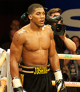 Picture by Alan Stanford/Focus Images Ltd +44 7915 056117<br /> 14/11/2013<br /> Anthony Joshua stands in the neutral corner while  Hrvoje Kisicek gets a standing count during their heavyweight contest at York Hall, Bethnal Green.