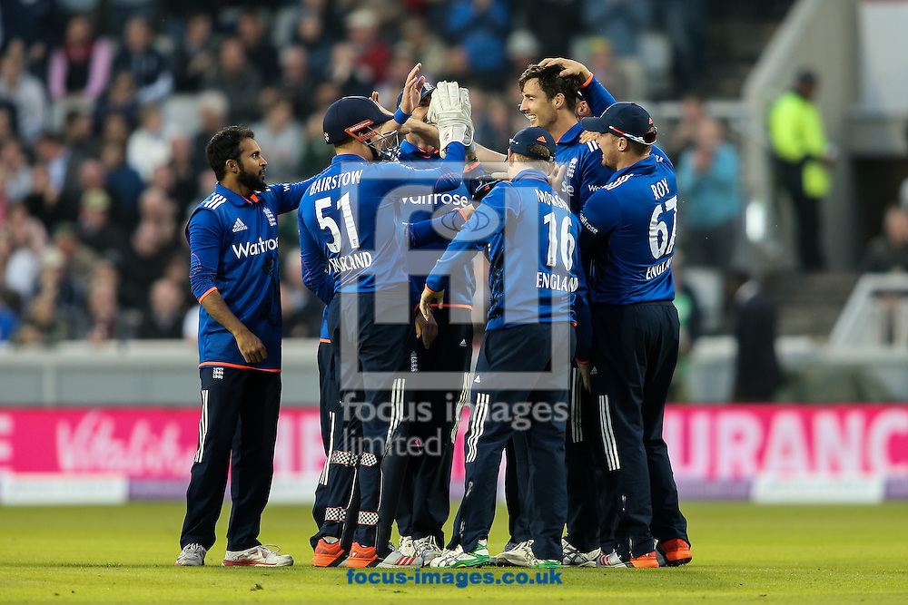 Steven Finn of England is congratulated by his team mates after taking a spectacular catch to dismiss Steve Smith of Australia (not shown) during the 3rd One Day International match at Old Trafford Cricket Ground, Stretford<br /> Picture by Andy Kearns/Focus Images Ltd 0781 864 4264<br /> 08/09/2015