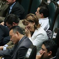 Toluca, Mex.- La diputada Blanca Gomez del PRI, habla por telefono celular durante la sesion del Congreso del Estado de Mexico donde se discue el decreto para la aprobacion de la ley de ingresos. Agencia MVT / Mario Vazquez de la Torre. (DIGITAL)<br /> <br /> <br /> <br /> <br /> <br /> <br /> <br /> NO ARCHIVAR - NO ARCHIVE