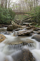 Early spring brings healthy water flows to Boone Fork, a headwater stream in the Southern Appalachian Mountains of North Carolina.  The Tanawha Trail passes overhead at this location.