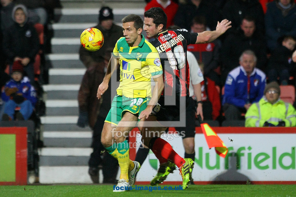 Gary O&rsquo;Neil of Norwich and Yann Kermorgant of Bournemouth in action during the match at the Goldsands Stadium, Bournemouth<br /> Picture by Paul Chesterton/Focus Images Ltd +44 7904 640267<br /> 10/01/2015