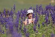 A two year old toddler in a field of Blue lupin (Lupinus pilosus) flowers