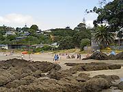 View of people enjoying Palm Beach, Mawhitipana Bay, Waiheke Island, New Zealand.