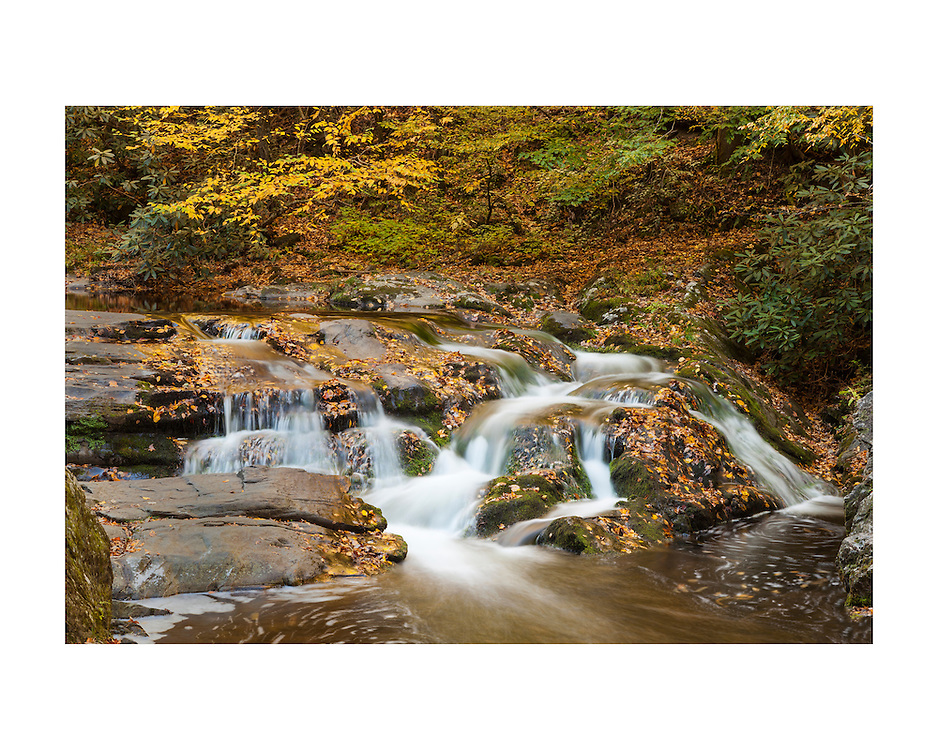 Laurel Creek Lower Cascades - Great Smoky Mountains - Autumn