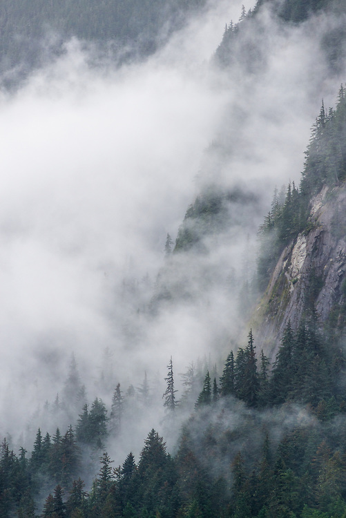Cloud shrouded mountain slope in Tongass National Forest, Alaska.
