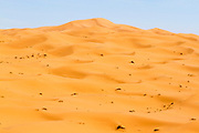 Landscape of the Erg Chebbi region of the Moroccan Sahara desert, near Merzouga, Southern Morocco, 2014-04-04. <br />