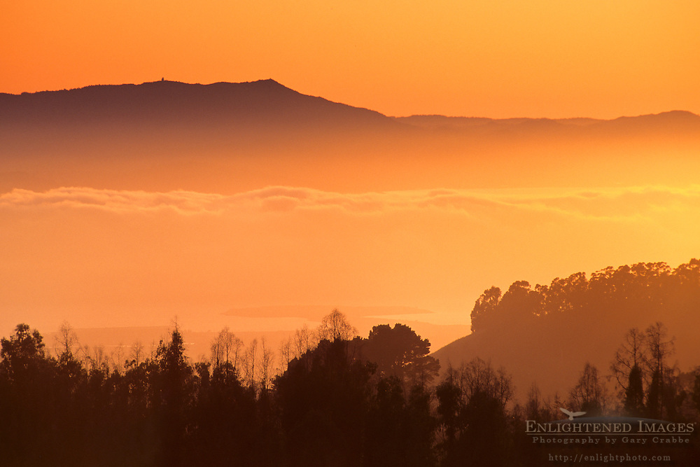Fog rolls into SF Bay at sunset, from Berkeley Hills, CALIFORNIA
