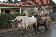 Farmers & ox cart, Viñales Valley ('Valle de Viñales''), Cuba
