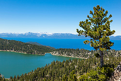 """Marlette Lake and Lake Tahoe 2"" - Photograph of both Marlette Lake and Lake Tahoe with a pine tree in the foreground."