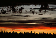 Sunset with colourful sky and trees
