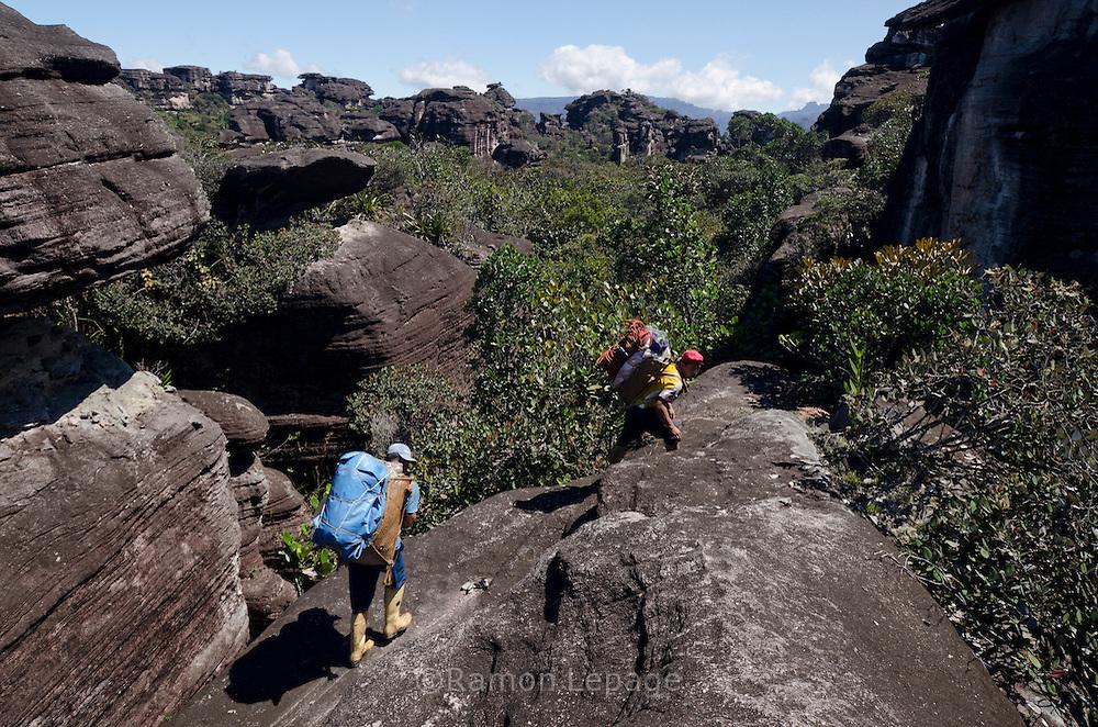 """AUYANTEPUY, VENEZUELA. Porteadores de carga durante travesía del tepuy. El Auyantepuy es el mayor de los tepuis del Parque Nacional Canaima. En sus 700 kms2 alberga el salto angel o conocido por lengua indígena Pemon como """"Kerepacupai Vena; es la caída de agua más grande del mundo con sus 979 metros de altura. (Ramon lepage /Orinoquiaphoto/LatinContent/Getty Images)"""