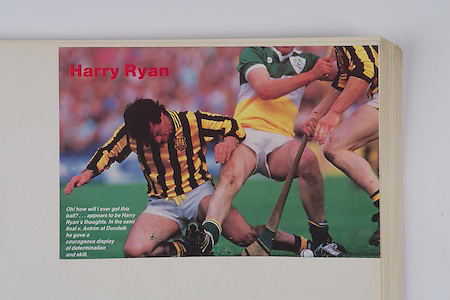 Harry Ryan, Hurling,
