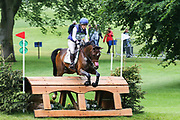 Classic VI ridden by Kirsty Johnston in the Equi-Trek CCI-L4* Cross Country during the Bramham International Horse Trials 2019 at Bramham Park, Bramham, United Kingdom on 8 June 2019.
